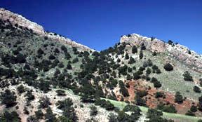 Twin Mountain - Field School_0.jpg